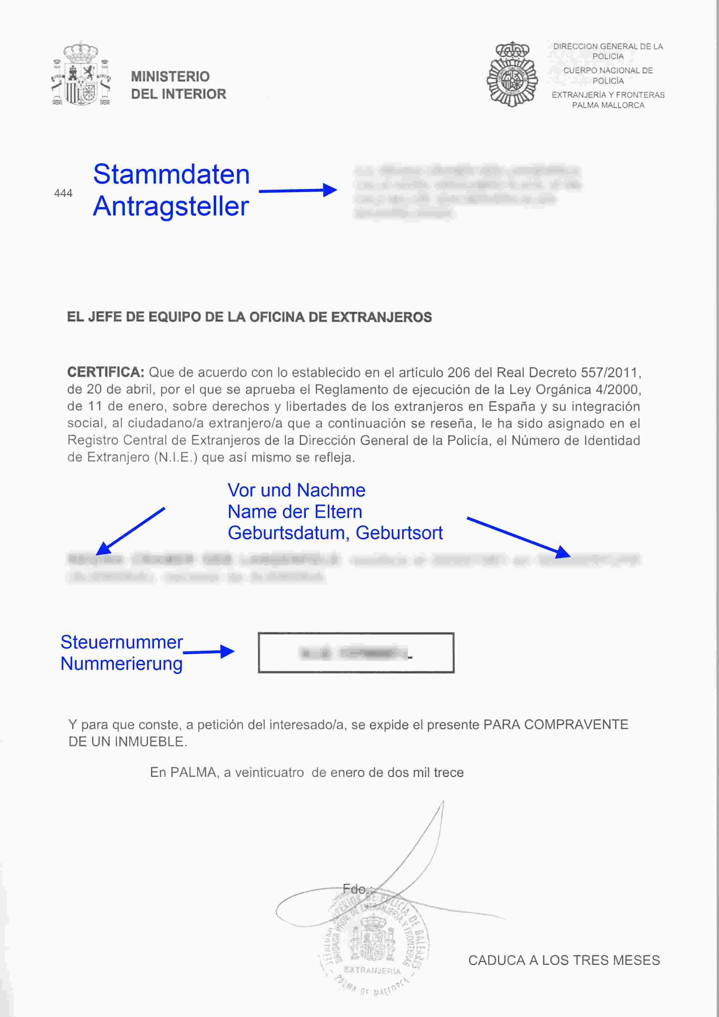 Beispiel-NIE-klein